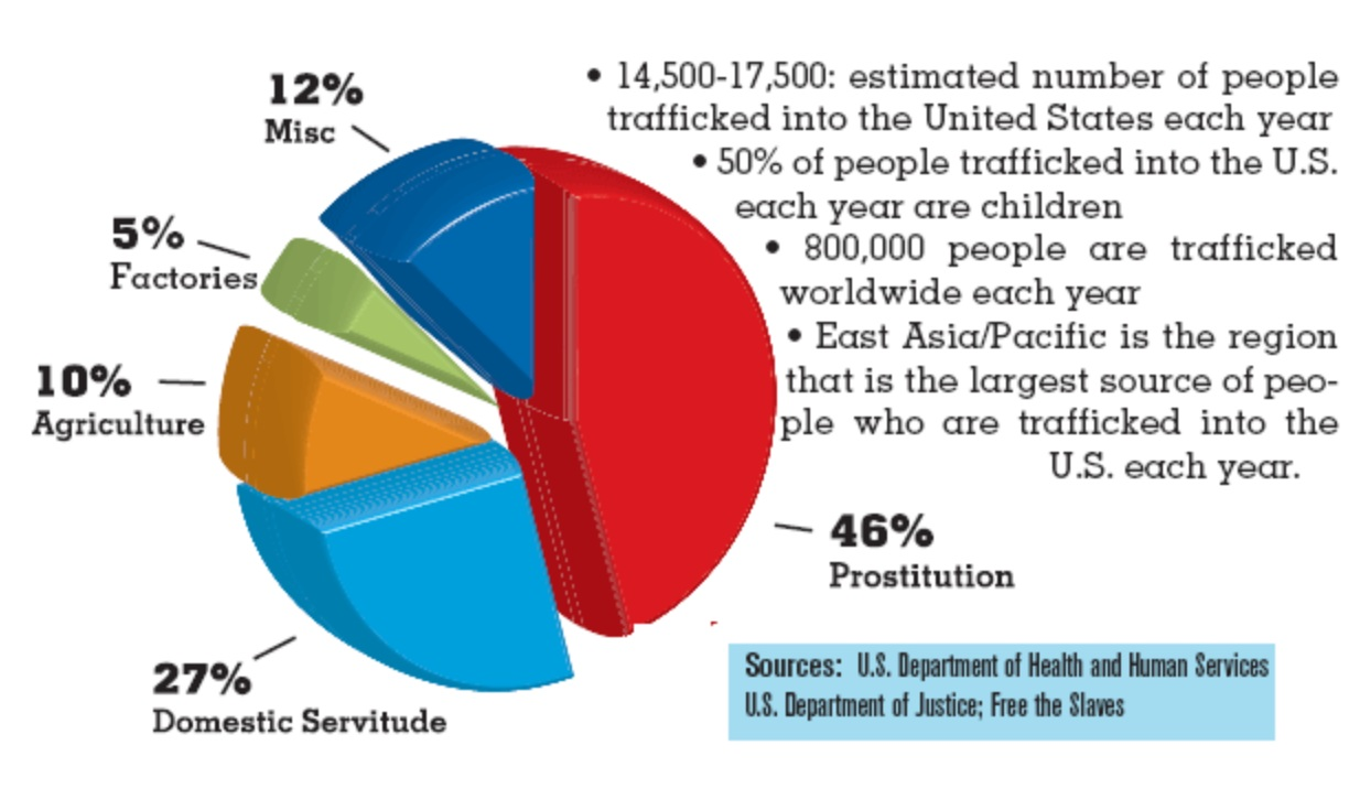 Human Trafficking Pie Chart