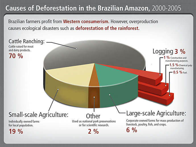 Causes of deforestation in the brazilian amazon ...