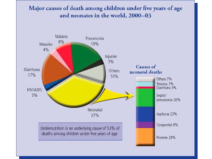 Major Causes of Death of Children and Infants (2000-2003)