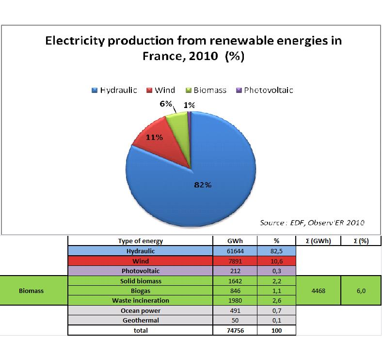 Electricity production from main renewable energies in France, 2010